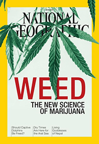 NatGeo-WEED-SCIENCE-COVER-570